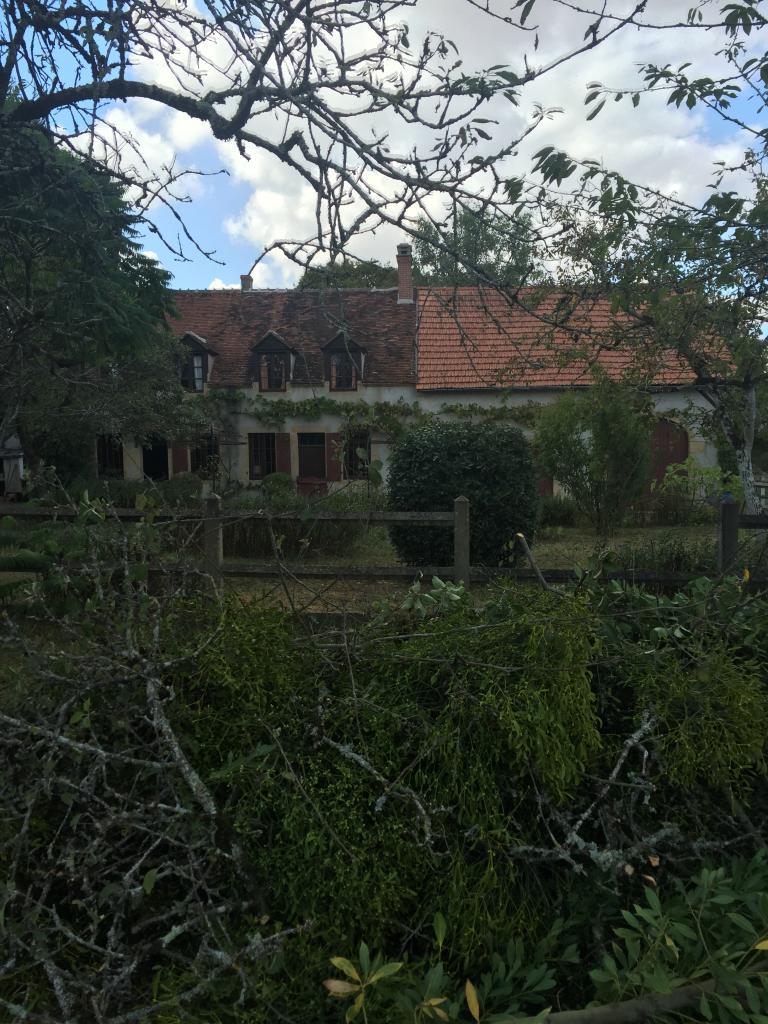 Abattage d'un vieux pommier a sevry 18140 cher 18 centre aprés