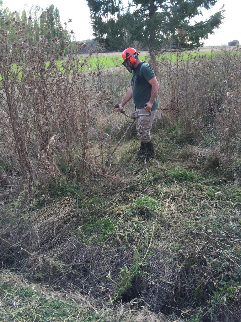 Débroussaillage terrain au rotofil dans la Nièvre