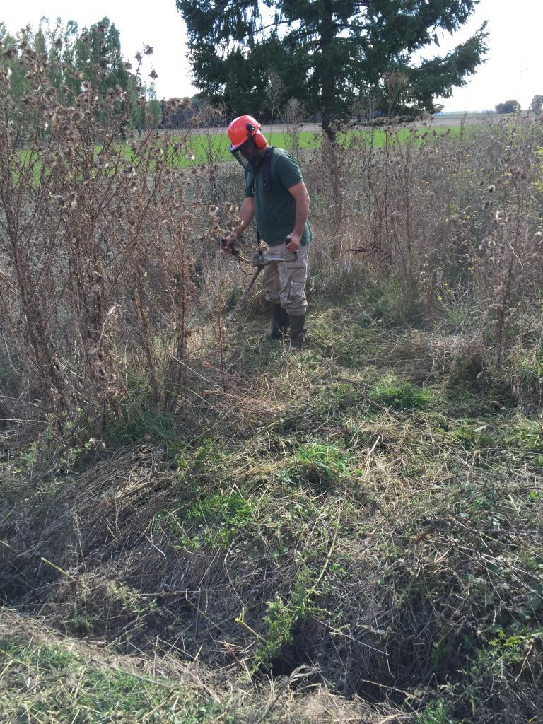 Défrichage terrain a la débroussailleuse dans la Nièvre