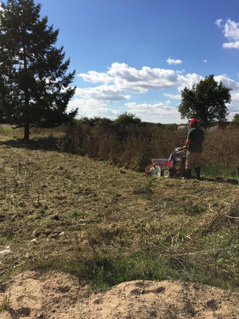 Défrichage terrain au gyro broyeur dans la Nièvre