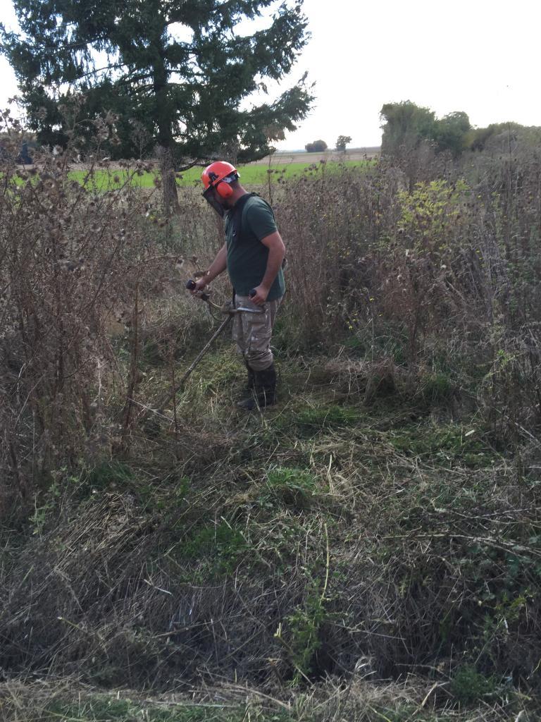 Défrichage terrain au rotofil dans la Nièvre