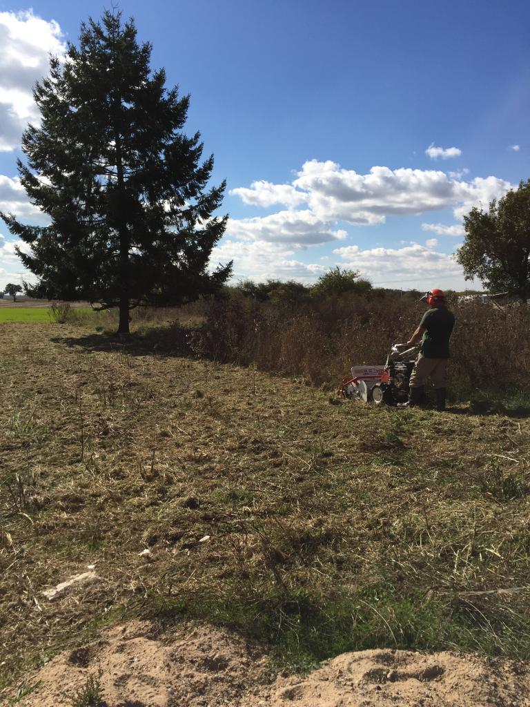 Défrichage terrain au tondo broyeur a fléaux dans la Nièvre