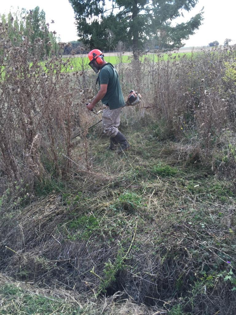 Fauchage terrain au rotofil dans la Nièvre