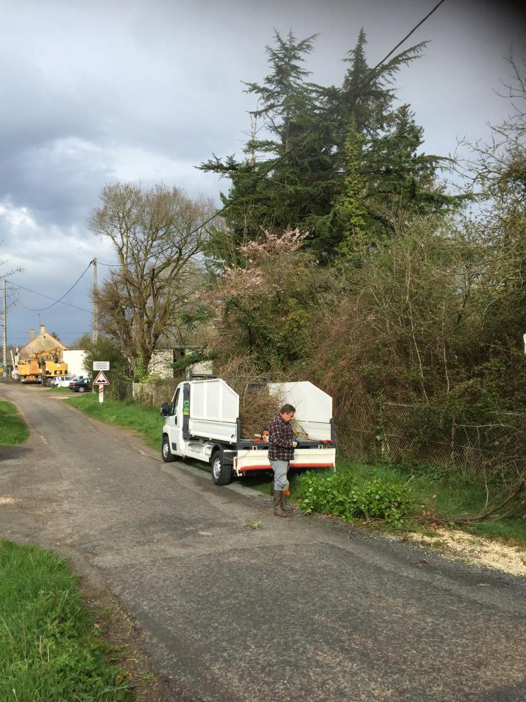 Taille d'entretien étêtage d'un arbre a la Celle sur Loire 58440 Nièvre 58 bourgogne 1