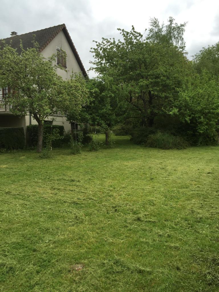 Tonte d'herbes d'un jardin a cosne cours sur loire 58200 nièvre 58 bourgogne aprés