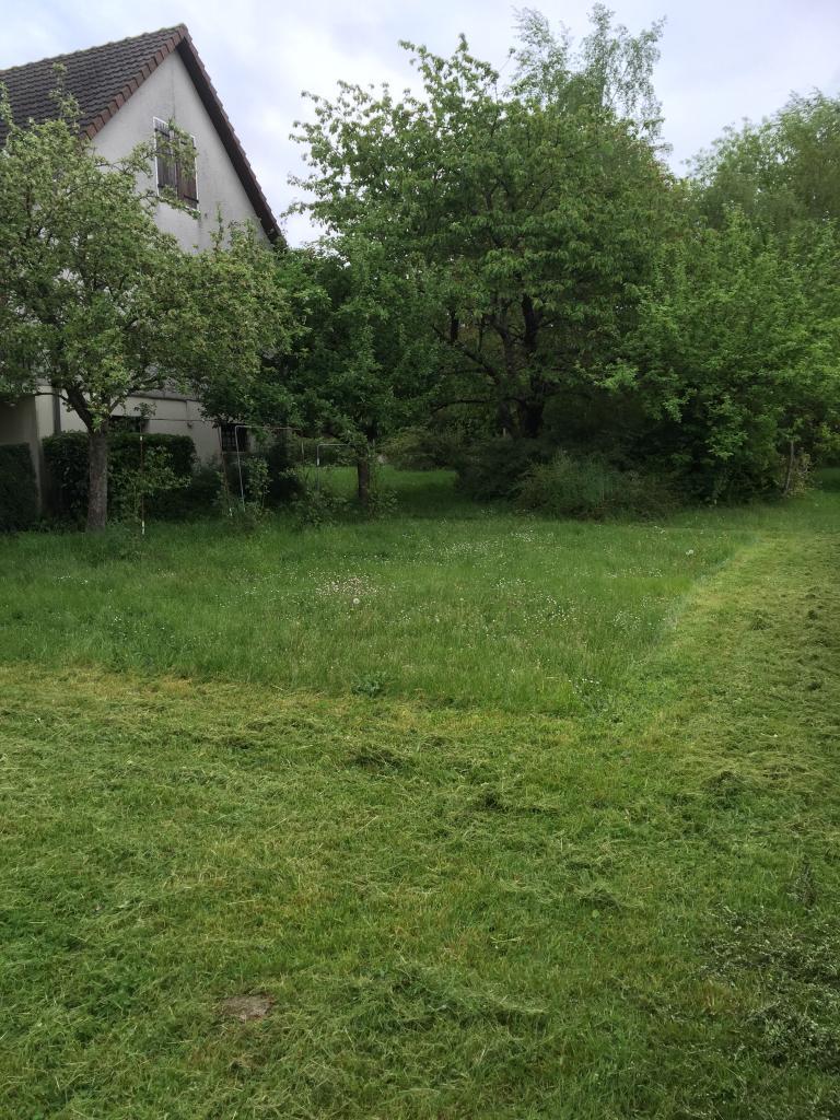 Tonte d'herbes d'un jardin a cosne cours sur loire 58200 nièvre 58 bourgogne avant
